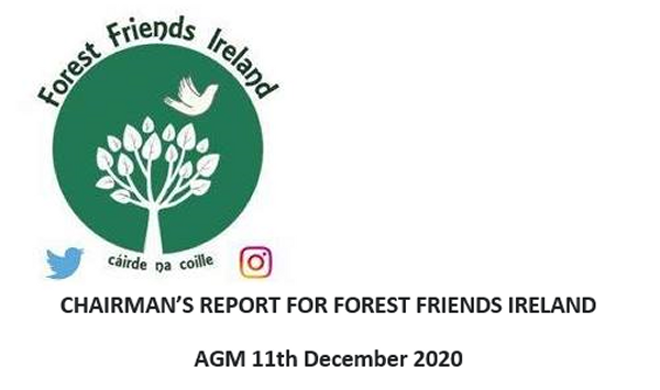 FFI Chairman's Report 2020